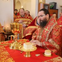 Викарий совершил Пасхальную литургию